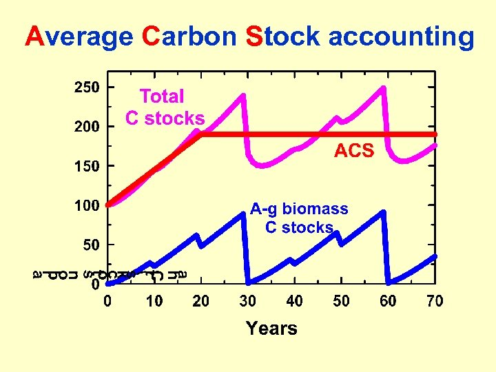 Average Carbon Stock accounting