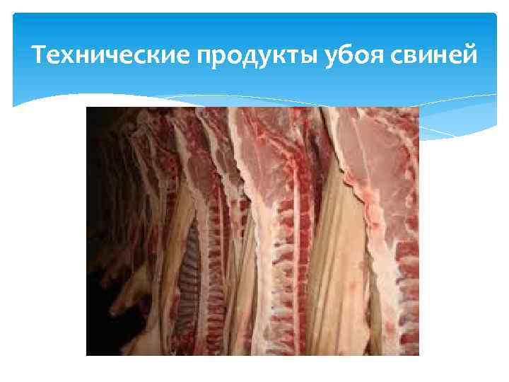 Технические продукты убоя свиней