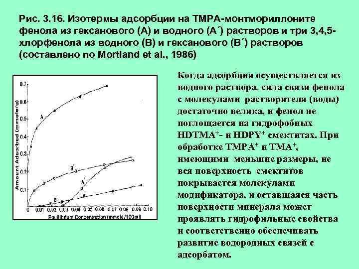 Рис. 3. 16. Изотермы адсорбции на ТМРА-монтмориллоните фенола из гексанового (А) и водного (А´)