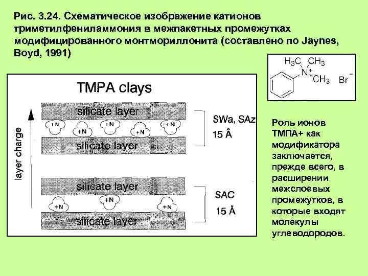 Рис. 3. 24. Схематическое изображение катионов триметилфениламмония в межпакетных промежутках модифицированного монтмориллонита (составлено по