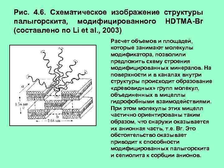 Рис. 4. 6. Схематическое изображение структуры палыгорскита, модифицированного HDTMA-Br (составлено по Li et al.