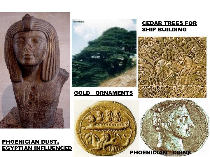 CEDAR TREES FOR SHIP BUILDING GOLD ORNAMENTS PHOENICIAN BUST, EGYPTIAN INFLUENCED PHOENICIAN COINS