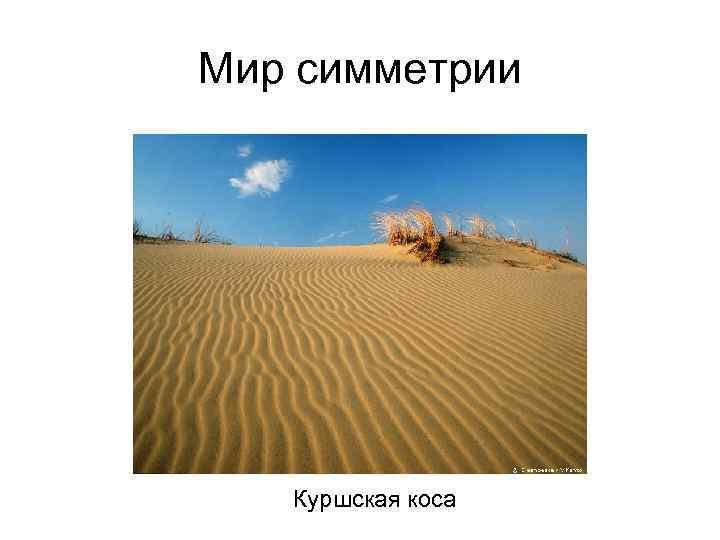 Мир симметрии Куршская коса