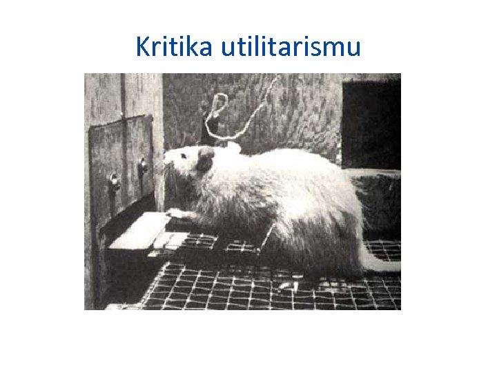 Kritika utilitarismu