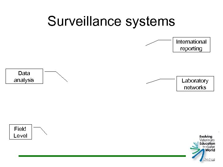 Surveillance systems International reporting Data analysis Field Level Laboratory networks