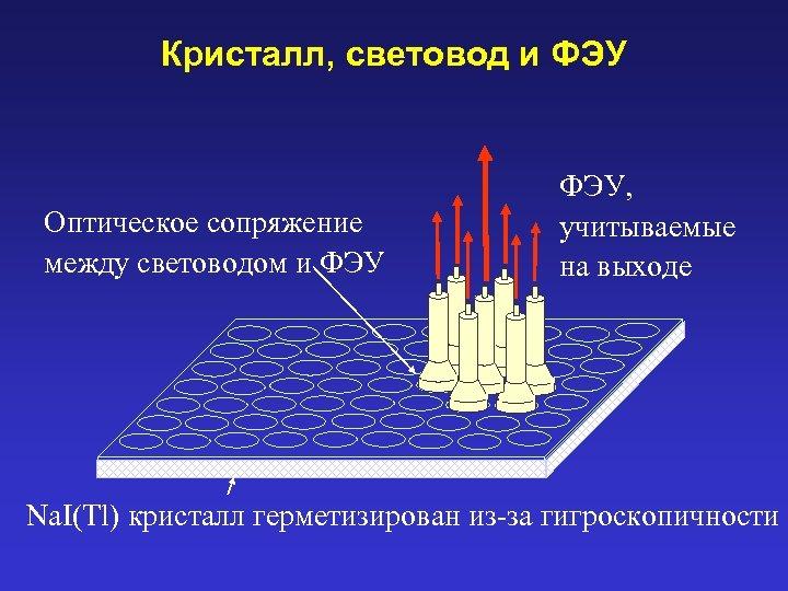 Кристалл, световод и ФЭУ Оптическое сопряжение между световодом и ФЭУ, учитываемые на выходе Na.