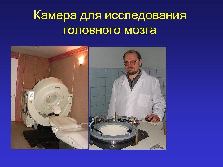 Камера для исследования головного мозга