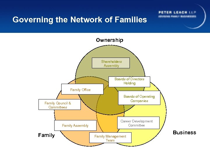 Governing the Network of Families Ownership Shareholders Assembly Boards of Directors Holding Family Office