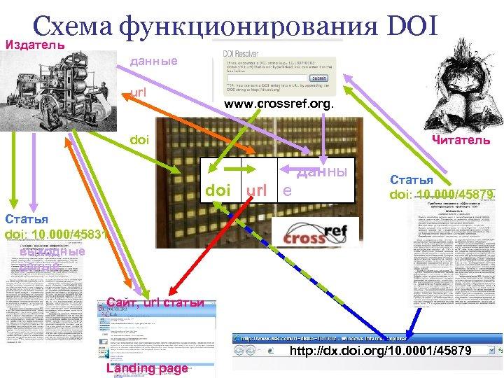 Схема функционирования DOI Издатель данные url www. crossref. org. Читатель doi данны doi url