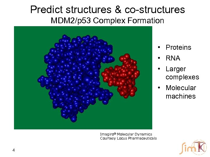 Predict structures & co-structures MDM 2/p 53 Complex Formation • Proteins • RNA •