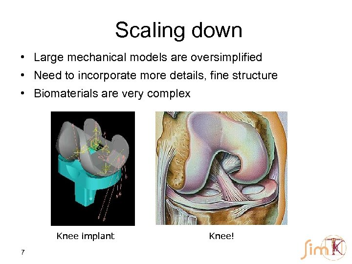 Scaling down • Large mechanical models are oversimplified • Need to incorporate more details,