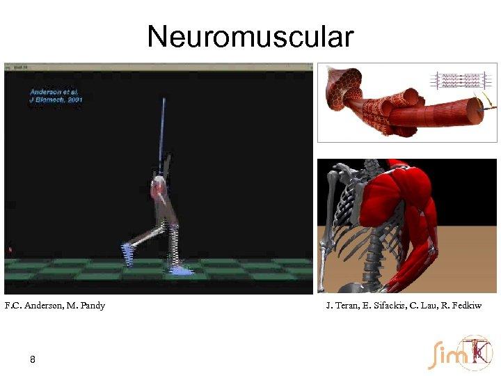 Neuromuscular F. C. Anderson, M. Pandy 8 J. Teran, E. Sifackis, C. Lau, R.