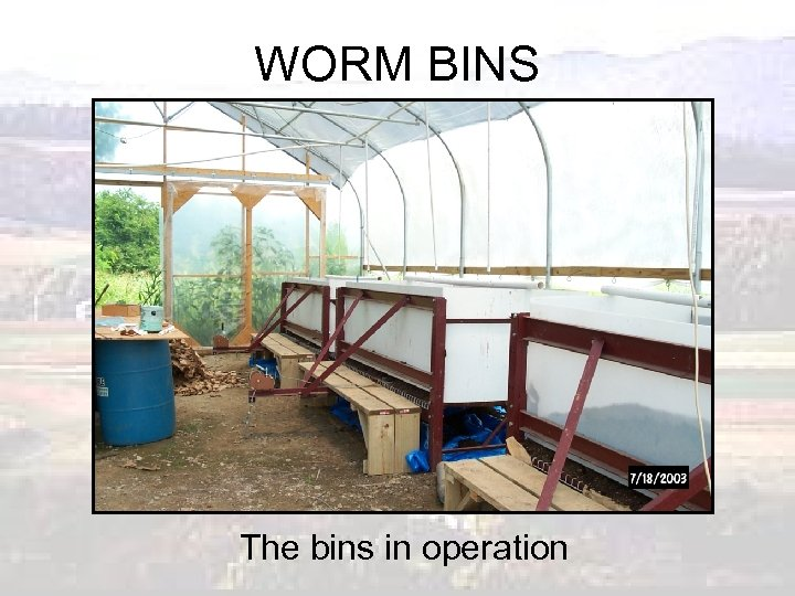WORM BINS The bins in operation