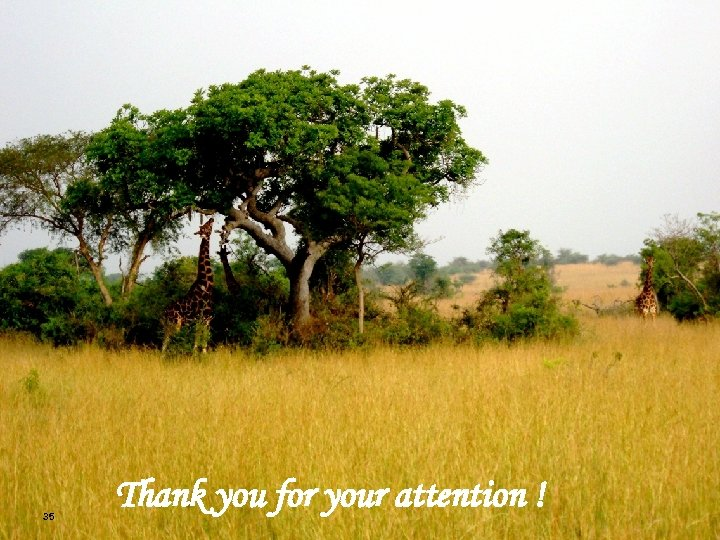 35 Thank you for your attention !
