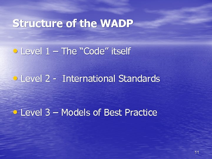 """Structure of the WADP • Level 1 – The """"Code"""" itself • Level 2"""