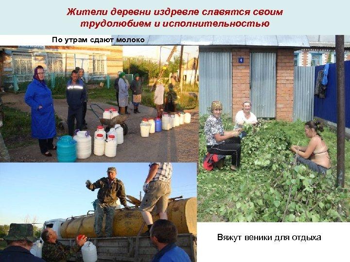 Жители деревни издревле славятся своим трудолюбием и исполнительностью По утрам сдают молоко Вяжут веники