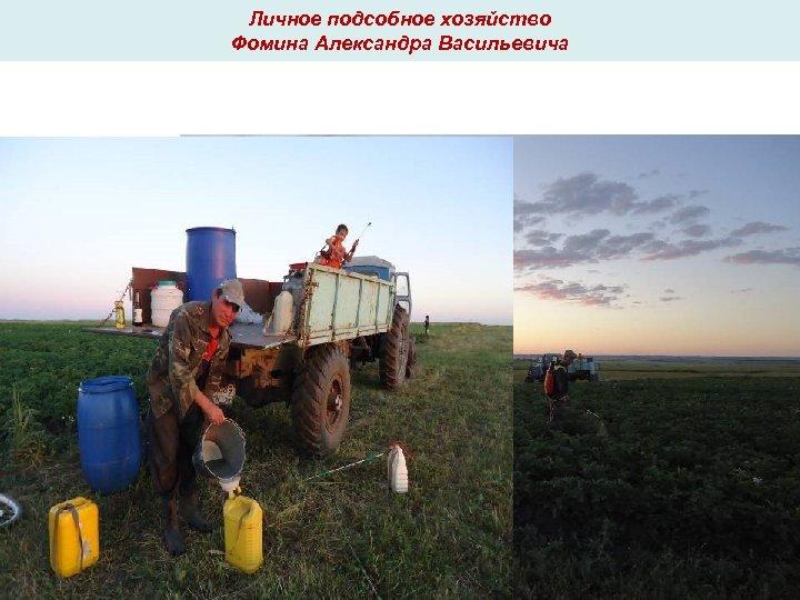 Личное подсобное хозяйство Фомина Александра Васильевича
