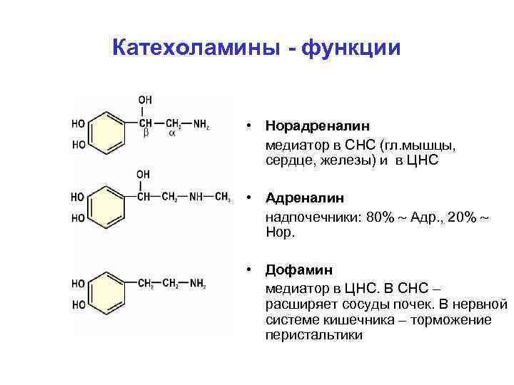 Катехоламины - функции • Норадреналин медиатор в СНС (гл. мышцы, сердце, железы) и в