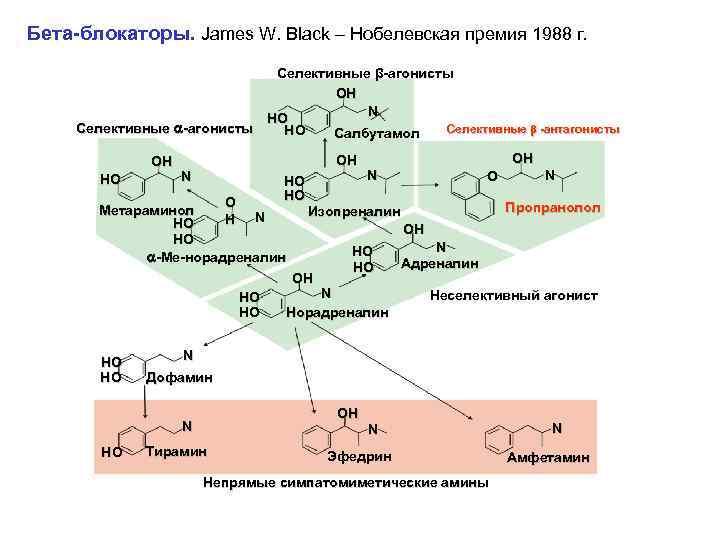 Бета-блокаторы. James W. Black – Нобелевская премия 1988 г. Селективные β-агонисты OH N HO