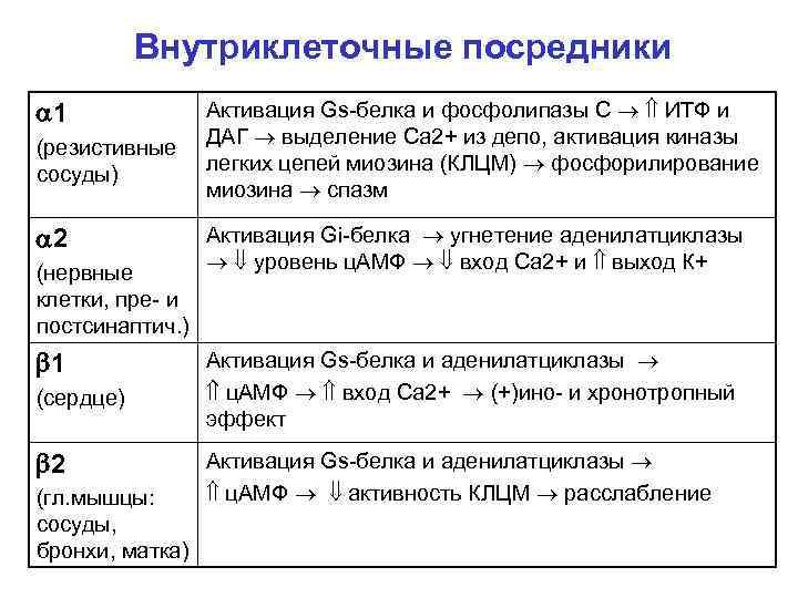 Внутриклеточные посредники 1 (резистивные сосуды) 2 (нервные клетки, пре- и постсинаптич. ) 1 (сердце)