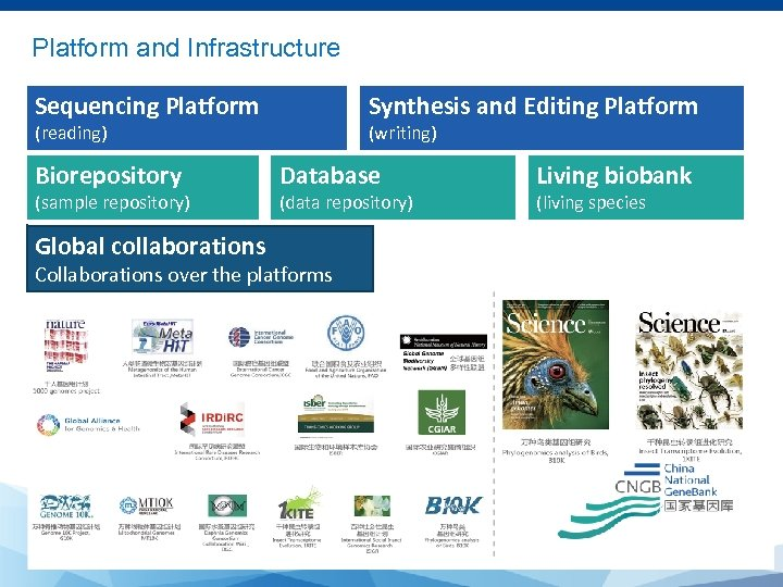 Platform and Infrastructure Sequencing Platform Synthesis and Editing Platform (reading) Biorepository (sample repository) Global