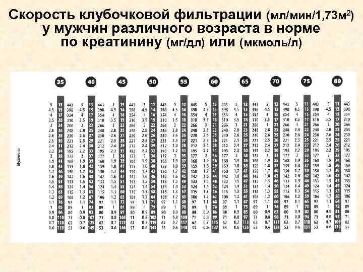 Скорость клубочковой фильтрации (мл/мин/1, 73 м 2) у мужчин различного возраста в норме по