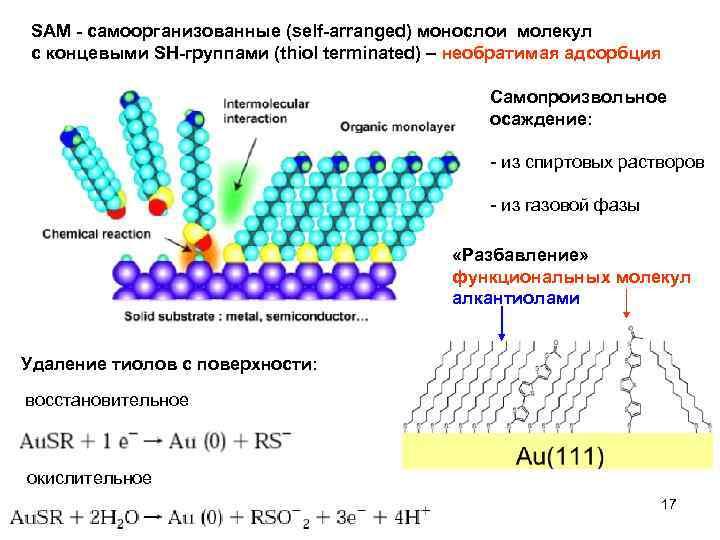 SAM - cамоорганизованные (self-arranged) монослои молекул с концевыми SH-группами (thiol terminated) – необратимая адсорбция
