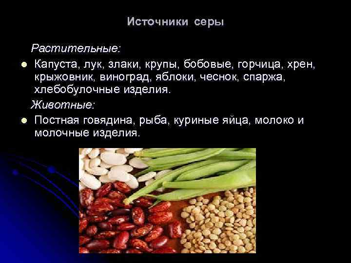 Источники серы Растительные: l Капуста, лук, злаки, крупы, бобовые, горчица, хрен, крыжовник, виноград, яблоки,