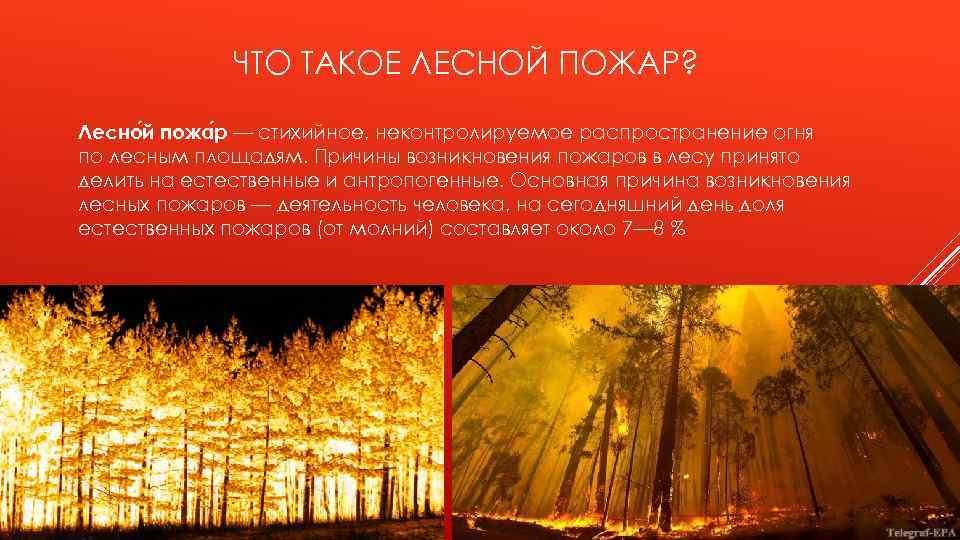 ЧТО ТАКОЕ ЛЕСНОЙ ПОЖАР? Лесно й пожа р — стихийное, неконтролируемое распространение огня по