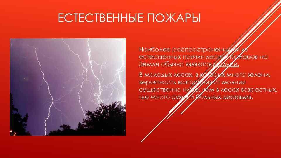 ЕСТЕСТВЕННЫЕ ПОЖАРЫ Наиболее распространенными из естественных причин лесных пожаров на Земле обычно являются молнии.