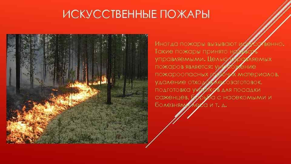 ИСКУССТВЕННЫЕ ПОЖАРЫ Иногда пожары вызывают искусственно. Такие пожары принято называть управляемыми. Целью управляемых пожаров
