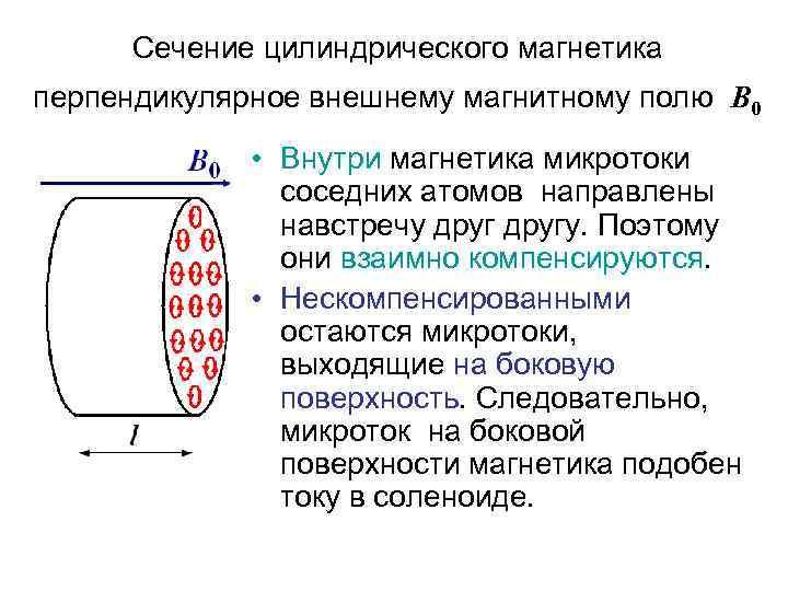 Сечение цилиндрического магнетика перпендикулярное внешнему магнитному полю В 0 • Внутри магнетика микротоки соседних