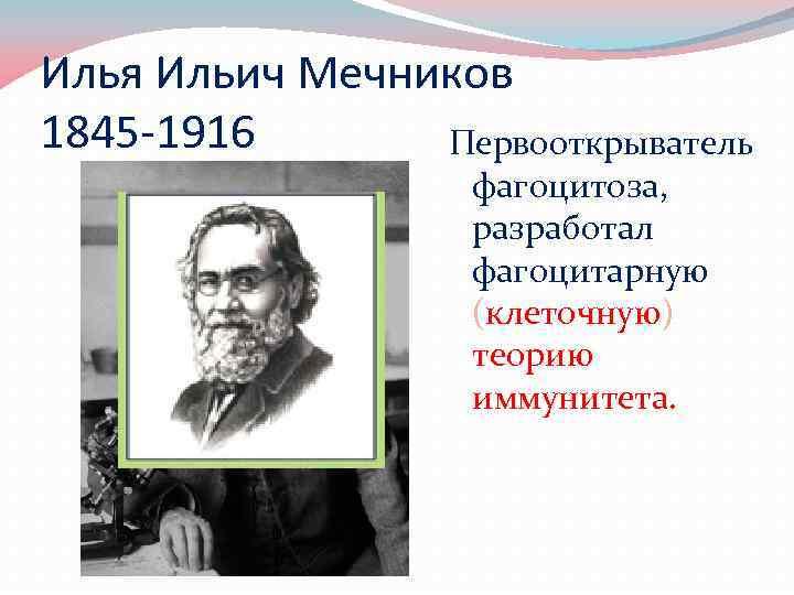 Илья Ильич Мечников 1845 -1916 Первооткрыватель фагоцитоза, разработал фагоцитарную (клеточную) теорию иммунитета.