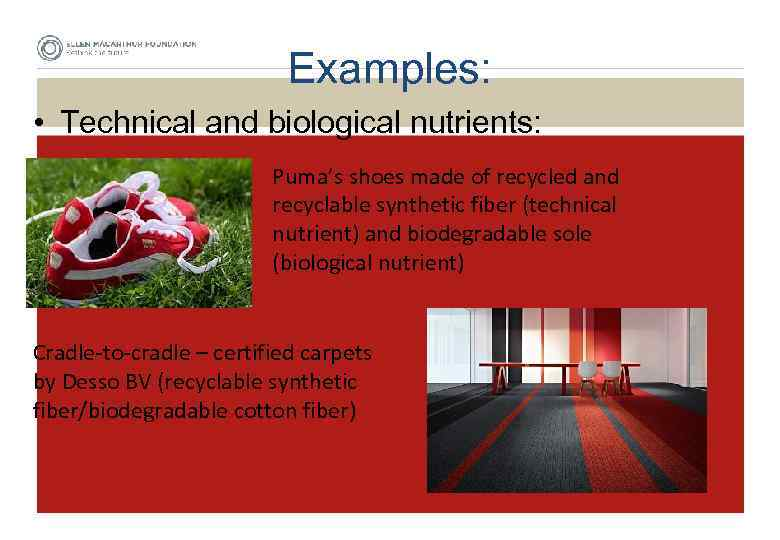 Examples: • Technical and biological nutrients: Puma's shoes made of recycled and recyclable synthetic
