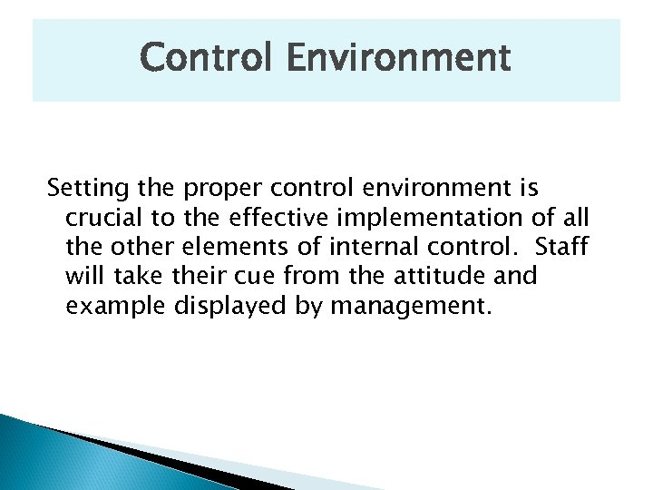 Control Environment Setting the proper control environment is crucial to the effective implementation of
