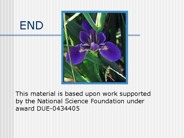 END This material is based upon work supported by the National Science Foundation under