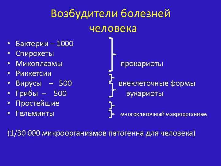 Возбудители болезней человека • • Бактерии – 1000 Спирохеты Микоплазмы прокариоты Риккетсии Вирусы –