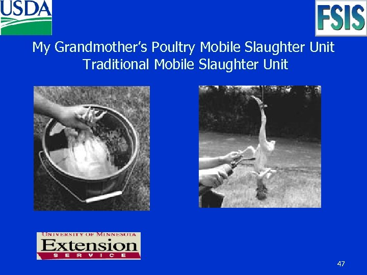 My Grandmother's Poultry Mobile Slaughter Unit Traditional Mobile Slaughter Unit 47