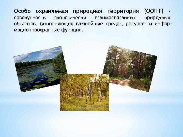 Особо охраняемая природная территория (ООПТ) совокупность экологически взаимосвязанных природных объектов, выполняющих важнейшие средо-, ресурсо-