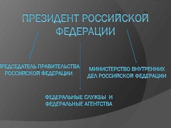 ПРЕЗИДЕНТ РОССИЙСКОЙ ФЕДЕРАЦИИ ПРЕДСЕДАТЕЛЬ ПРАВИТЕЛЬСТВА РОССИЙСКОЙ ФЕДЕРАЦИИ МИНИСТЕРСТВО ВНУТРЕННИХ ДЕЛ РОССИЙСКОЙ ФЕДЕРАЦИИ ФЕДЕРАЛЬНЫЕ СЛУЖБЫ