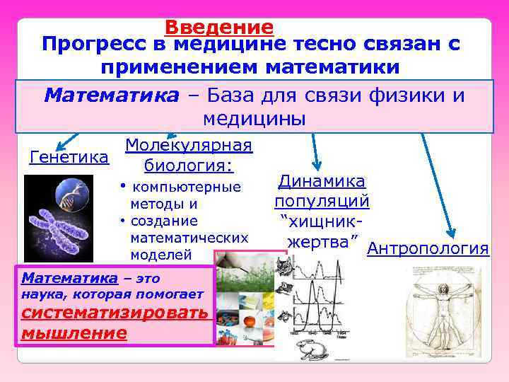 Введение Прогресс в медицине тесно связан с применением математики Математика – База для связи