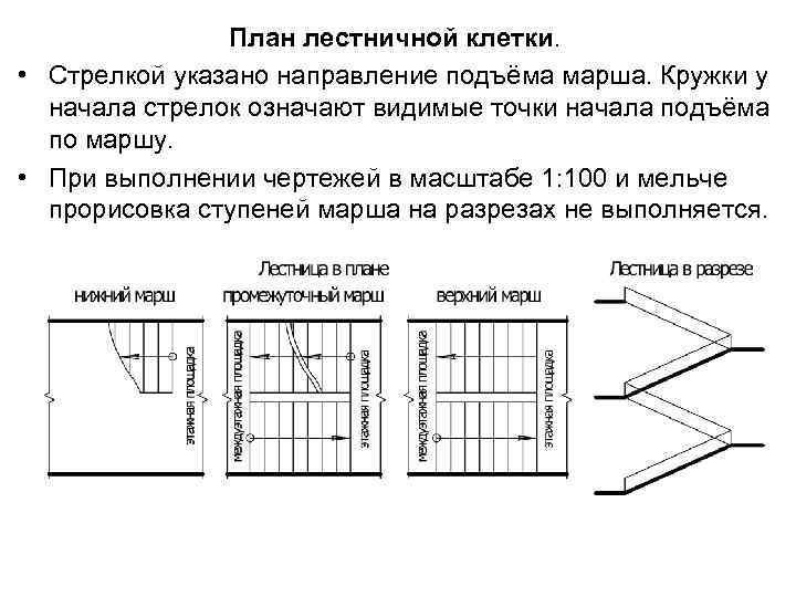 План лестничной клетки. • Стрелкой указано направление подъёма марша. Кружки у начала стрелок означают