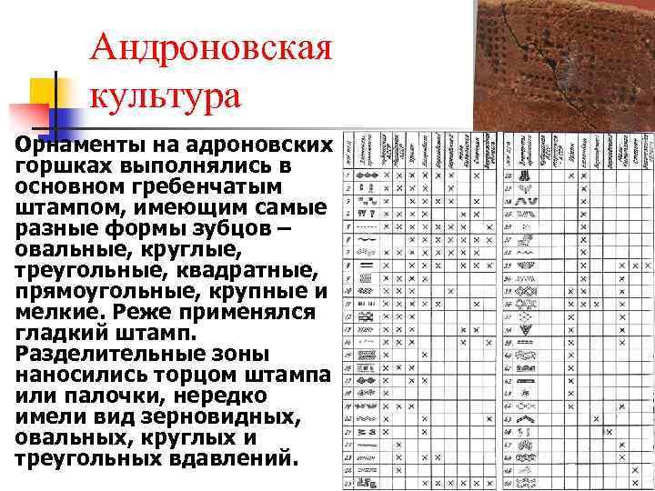 n Андроновская культура Орнаменты на адроновских горшках выполнялись в основном гребенчатым штампом, имеющим самые
