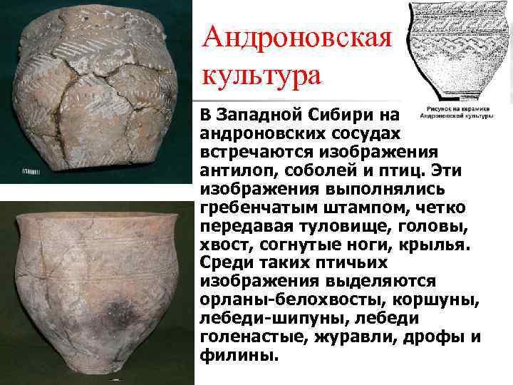 Андроновская культура n В Западной Сибири на стенках андроновских сосудах встречаются изображения антилоп, соболей