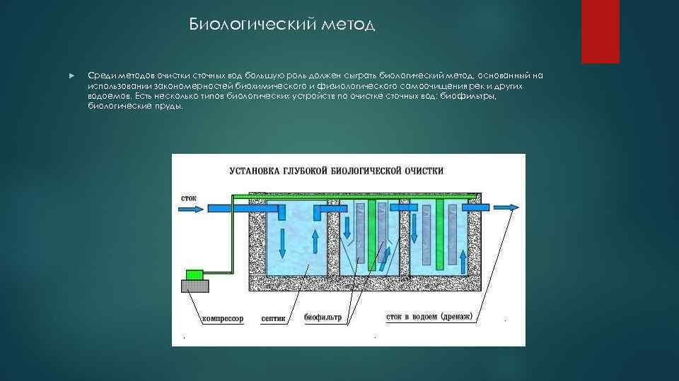 Биологический метод Среди методов очистки сточных вод большую роль должен сыграть биологический метод, основанный