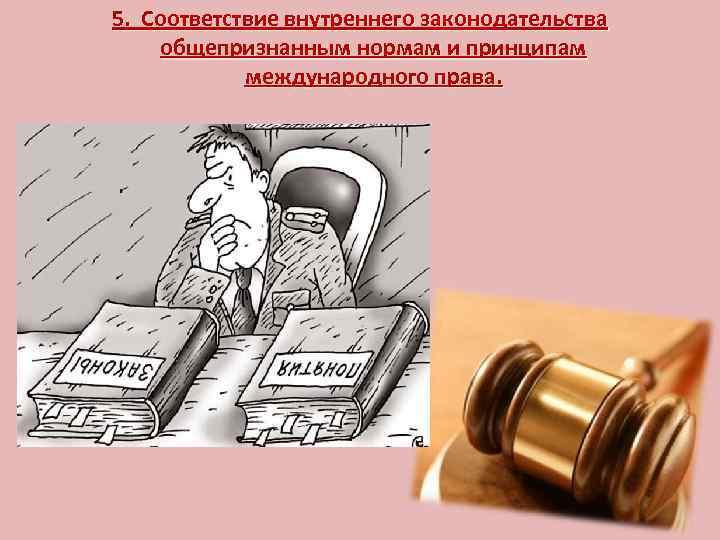 5. Соответствие внутреннего законодательства общепризнанным нормам и принципам международного права.