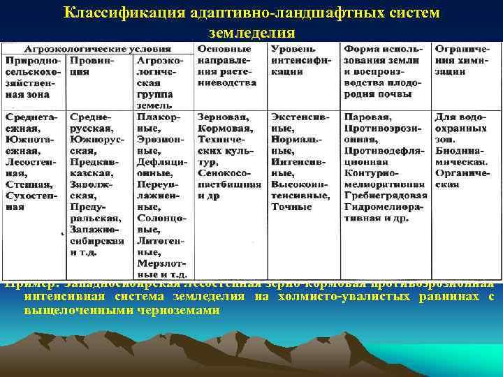 Классификация адаптивно-ландшафтных систем земледелия Пример: Западносибирская лесостепная зерно-кормовая противоэрозионная интенсивная система земледелия на холмисто-увалистых