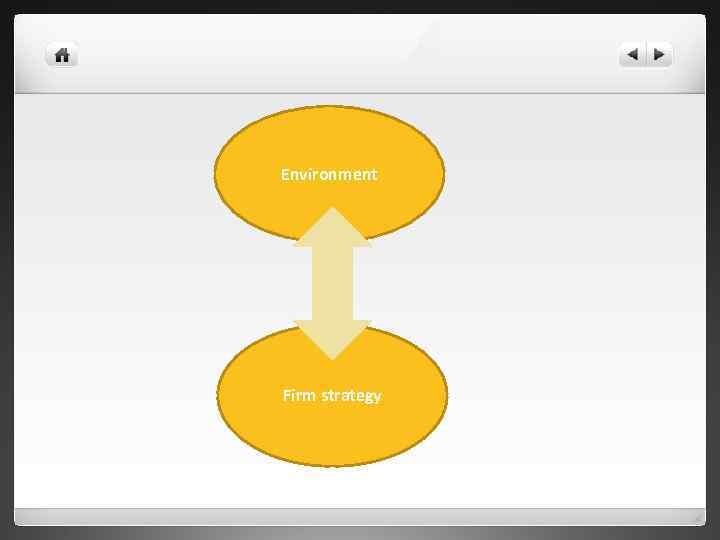 Environment Firm strategy