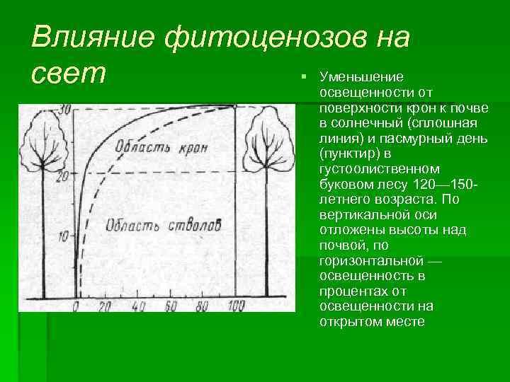 Влияние фитоценозов на § Уменьшение свет освещенности от поверхности крон к почве в солнечный