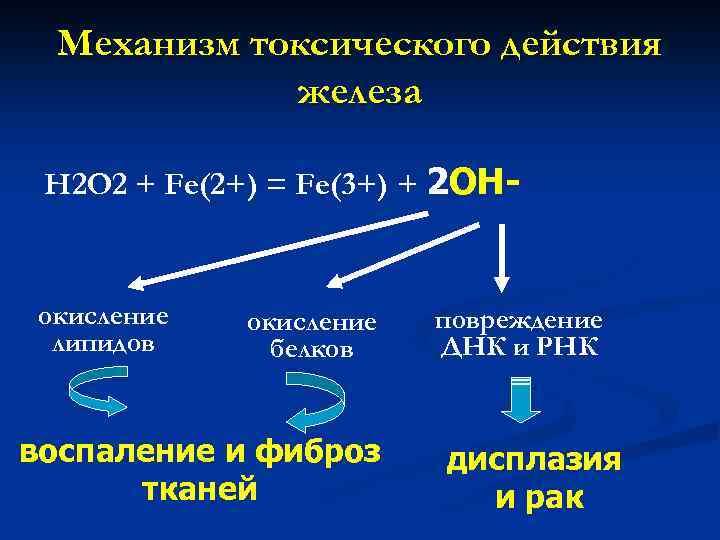 Механизм токсического действия железа H 2 O 2 + Fe(2+) = Fe(3+) + 2